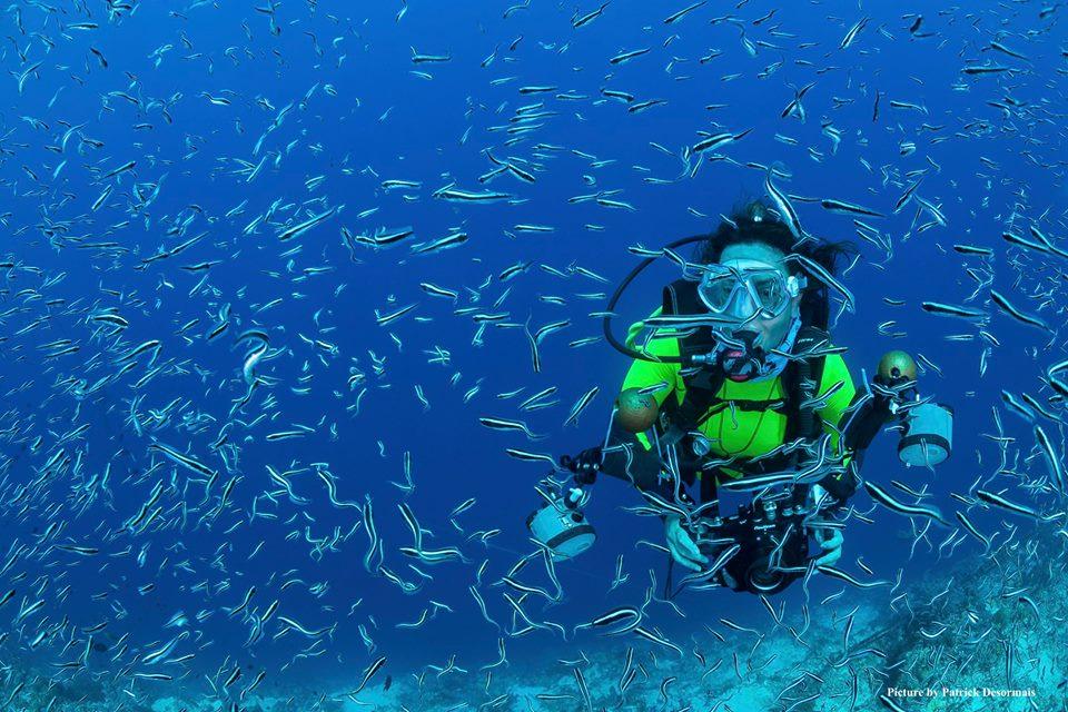 Astuces pour profiter de votre voyage plongée bali