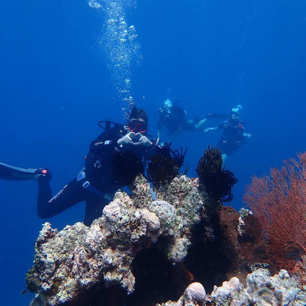 Spot Plongée Bali : partez à l'exploration des tombants